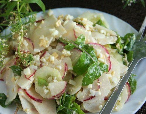 Баварский салат с редиской, редькой и огурцом