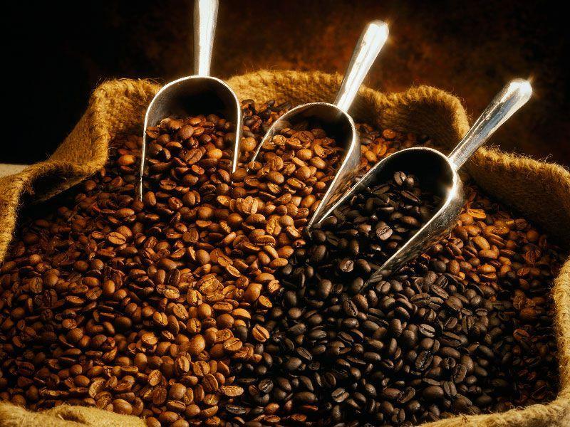 Вкуснейший кофе в зернах: приобретение качественного продукта оптом и розницей в России
