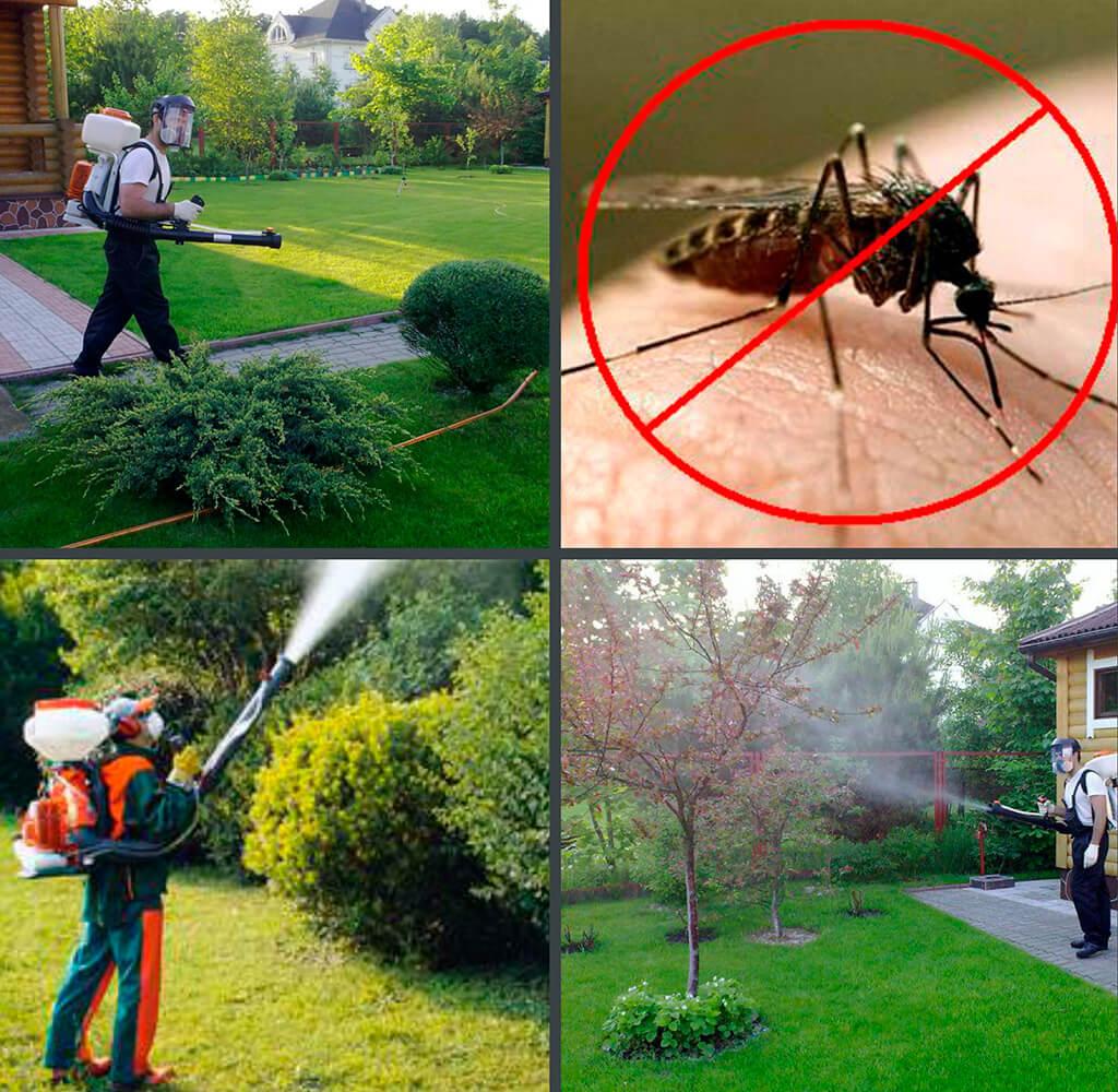 Современный методы борьбы с насекомыми